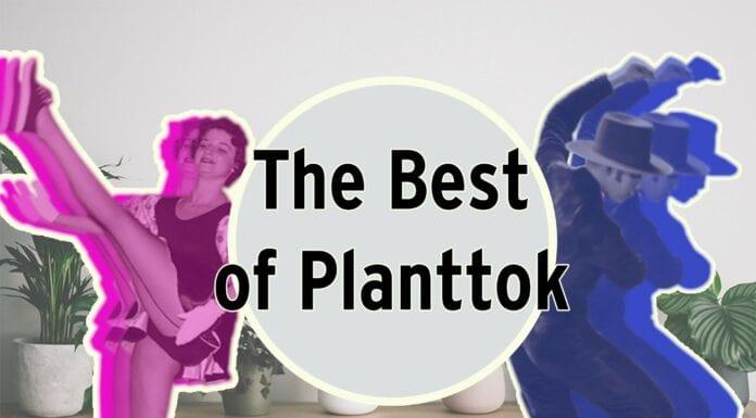 best of planttok