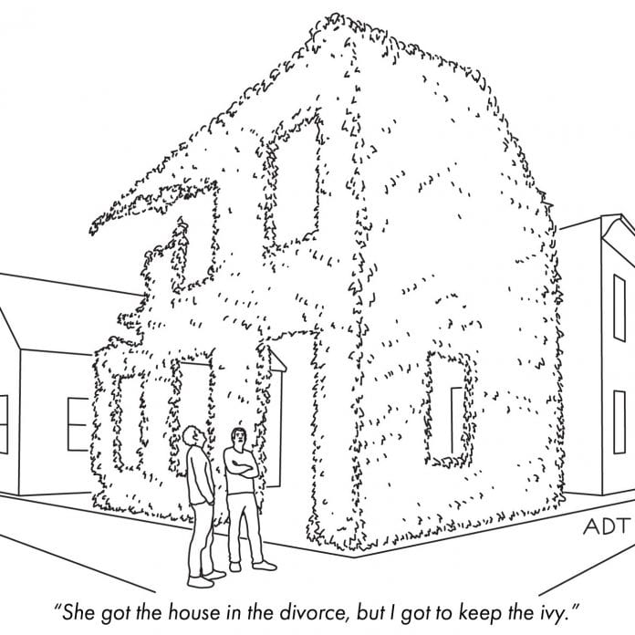 ivy divorce alimony garden